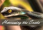 Ki Tavo: Harnessing the Snake