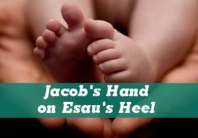Toldot: Jacob's Hand on Esau's Heel
