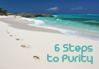 6 Steps to Purity