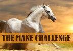 The Mane Challenge