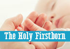 The Holy Firstborn