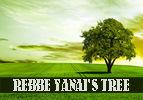 Rebbe Yanai's Tree
