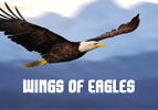 Wings of Eagles - Personal Prayer
