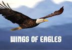 Wings of Eagles