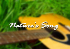 Nature's Song - Perek Shira
