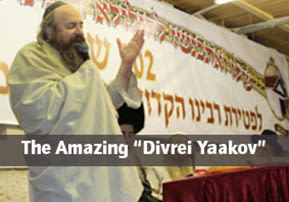 "The Amazing ""Divrei Yaakov"""