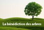 La bénédiction des arbres