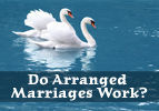 Do Arranged Marriages Work?