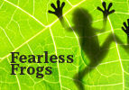 Fearless Frogs