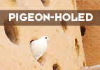 Pigeon-holed