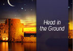Head in the Ground