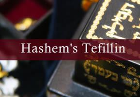 Ki Tisa: Hashem's Tefillin