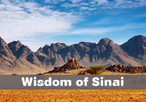 Wisdom of Sinai