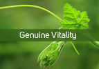 Genuine Vitality