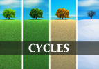 Tzav: Cycles of Our Lives