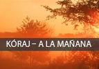 Kóraj – A la Mañana