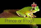 Prince or Frog?