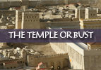 The Temple or Bust