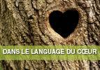 Dans le langage du cœur