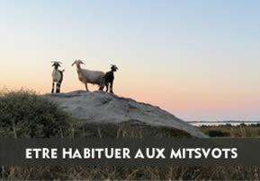 Etre habitué aux Mitsvots-Ah'arei Mot