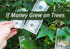 If Money Grew on Trees