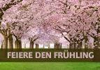 Feiere den Frühling
