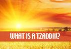 Devorim: What is a Tzaddik?