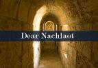 Dear Nachlaot
