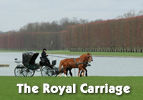 Yitro: The Royal Carriage