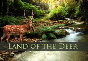 Land of the Deer