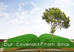 Our Covenant From Sinai