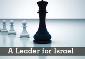 Masei: A Leader for Israel