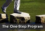 The One-Step Program
