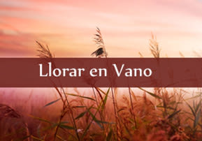 Llorar en Vano