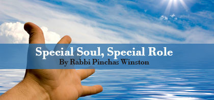 Special Soul, Special Role