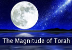 The Magnitude of Torah