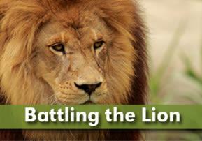 Battling the Lion