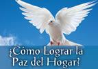 ¿Cómo Lograr la Paz del Hogar?