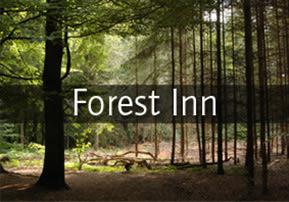 Forest Inn