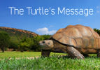 The Turtle's Message
