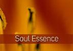 Soul Essence
