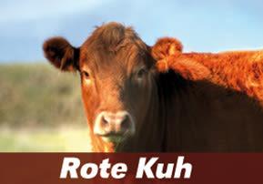 Rote Kuh - Chukat
