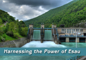 Toldot: Harnessing the Power of Esau