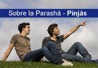 Sobre la Parashá - Pinjas