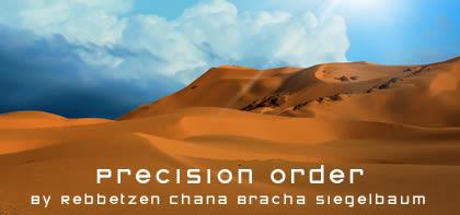 Bamidbar: Precision Order