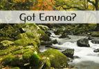 Got Emuna?