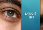 Different Eyes for Eretz Yisrael