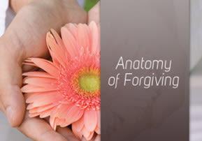 Anatomy of Forgiving