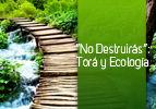 """""""No Destruirás"""": Torá y Ecología"""