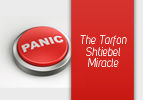 The Tarfon Shtiebel Miracle